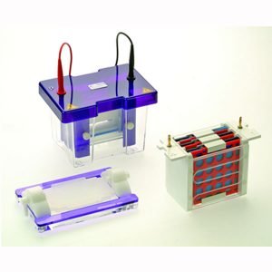 Vertikální elektroforéza s blotováním